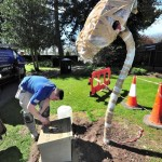 Poppy sculpture being installed in Cripplegate Park - designed by Living Mosaics